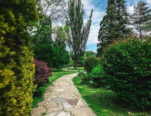 Fotografovanie parku v Nitre